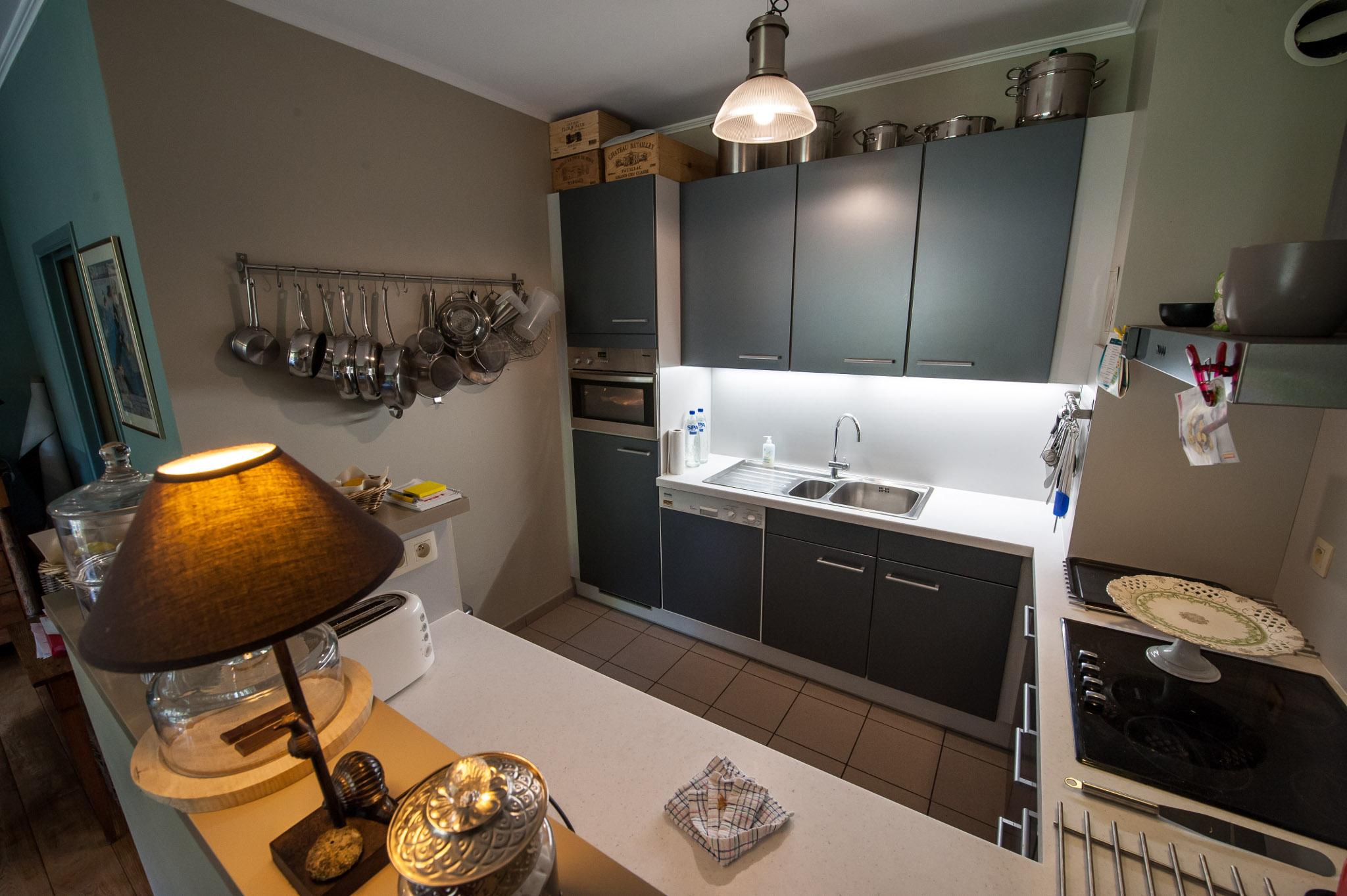 Petite cuisine intégrée au séjour